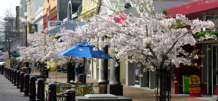 things to do in invercargill nz