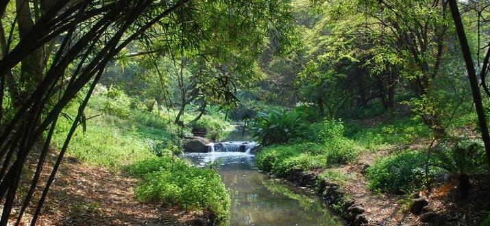 things to do in hinjewadi india