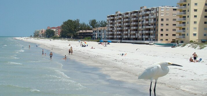 things to do in indian shores florida