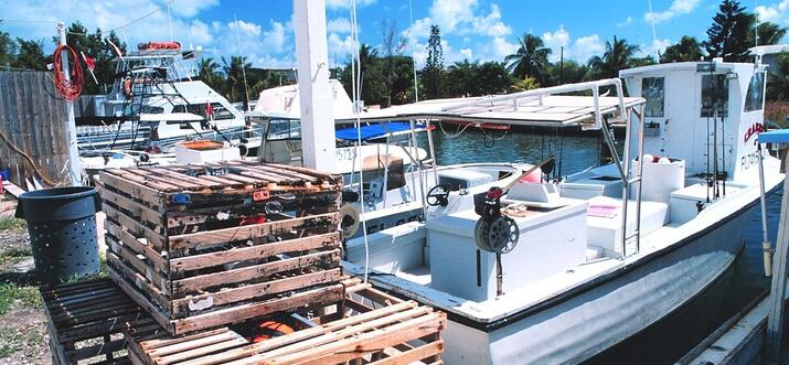 things to do in tavernier florida