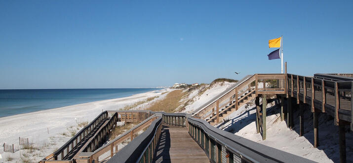 things to do in seagrove beach florida