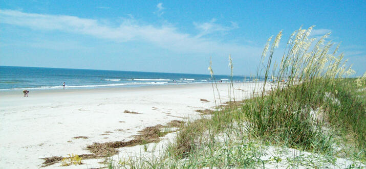things to do in arcadian shores south carolina
