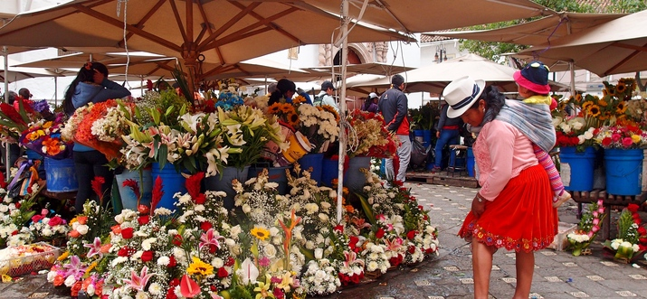 Top {{trip101_paragraph_count}} Things To Do In Cuenca, Ecuador: Charms, Potions and Straw Hats