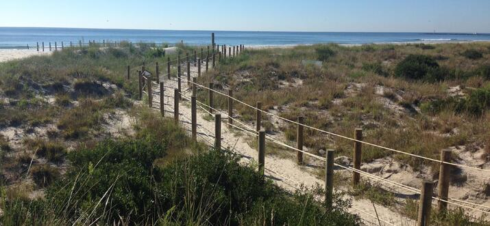 Forget the Boardwalk! Head To Two Mile Beach