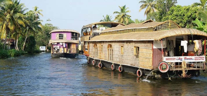 things to do in alleppey