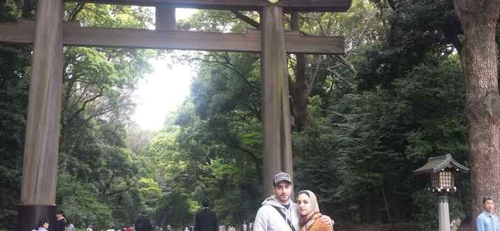day tours in tokyo