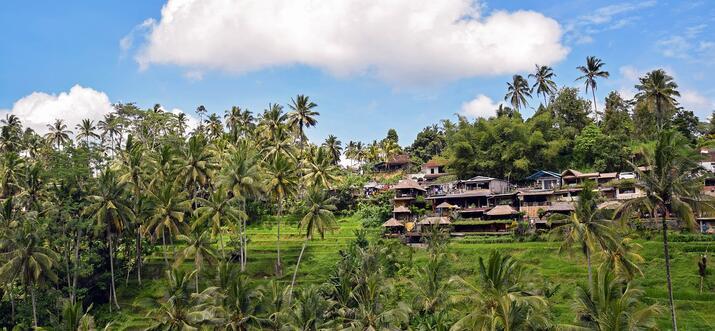 How To Travel Around Bali Via Gojek, Grab & More - Updated 2021