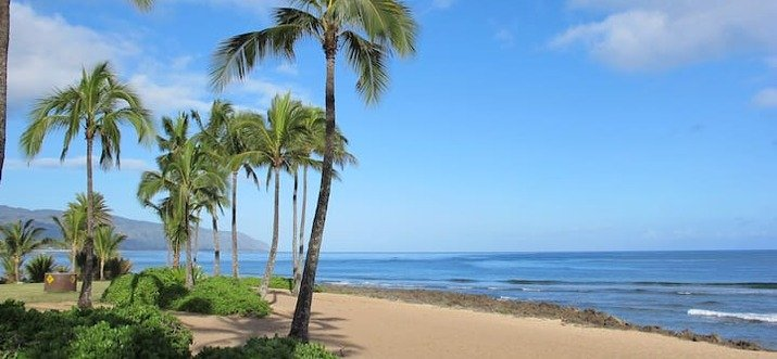 Airbnb Vacation Rentals In Haleiwa, Hawaii, USA