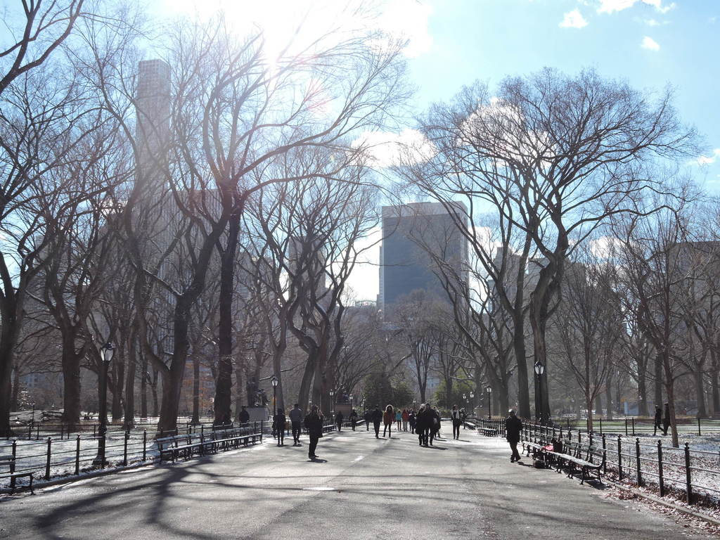 5 free fun things to do in central park new york city for Fun things to do in ny city